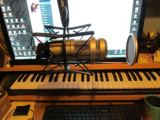 Heil Sound PR 40, side view, suspended from boom. Note the attached pop filter.