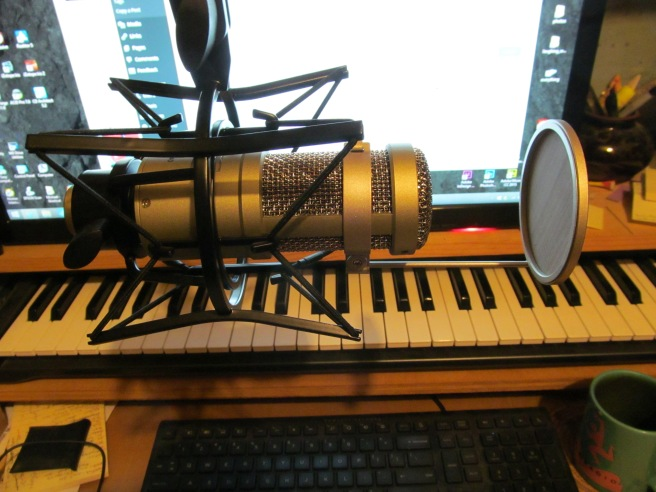 Heil Sound PR 40 dynamic mic, side view, cradled in shock mount, with pop filter attached.