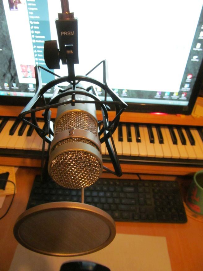 The Heil Sound PR 40 is a front, or end, delivery microphone. This is more or less the view you'd have of it when using the mic. Most mics have the diaphragm facing the side.